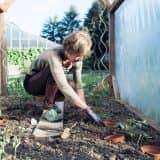 Bei der Biogartenarbeit