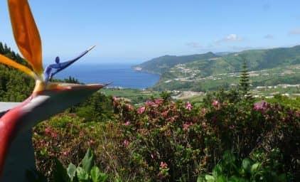 Garten- & Wanderreise Azoren
