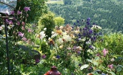 Privatgartenreise nach Oberösterreich