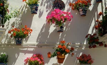 Garten- & Kulturreise Andalusien