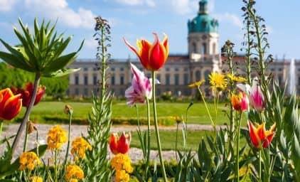 Berlin, grüne Lebenskultur erleben