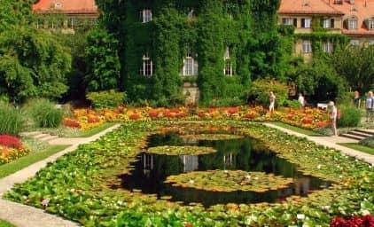 Blühendes Bayern - zur Sommerblüte