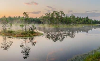 Estland - Perle des Baltikums