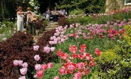 Frühlingsgärten in Cornwall