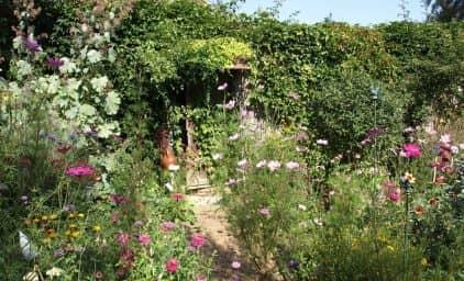 Lady Gardeners im Norden NÖ