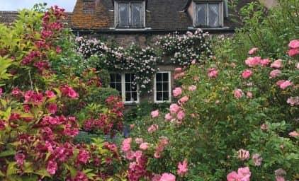 Angelikas Lieblingsgärten in Cornwall & Somerset