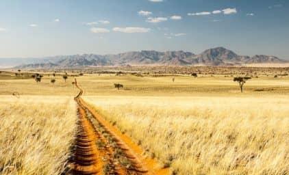 Namibia - weites, wildes Land