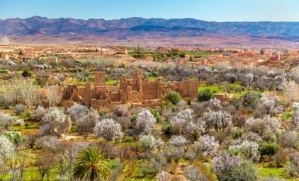 Marokko zur Rosenblüte - der ganze Zauber des Orients