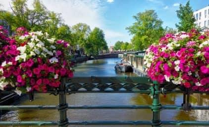 Hollands schönste Tulpengärten im Frühling