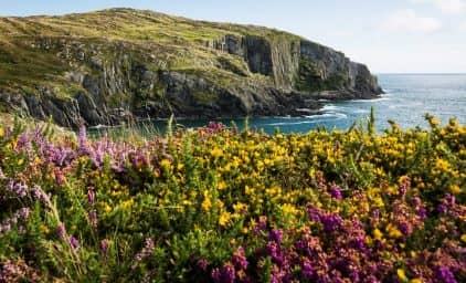 Wandern in Cornwall, Devon & Somerset