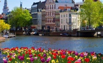 Zur Tulpenblüte nach Holland – inkl. Blumenkorso