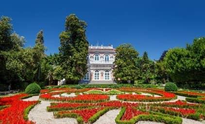 Zur Kamelienblüte nach Opatija, Kroatien