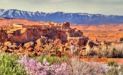 Marokko zur Zeit der Rosenblüte - der ganze Zauber des Orients