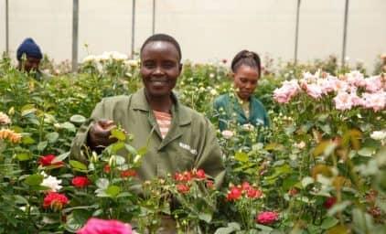 Tansania mit Sansibar: Inselträume und Nationalparks
