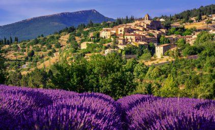 Französische Lavendelsymphonie