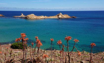Naturparadies Menorca, die Stille Insel
