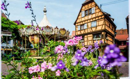 Gartenreise durchs Elsass