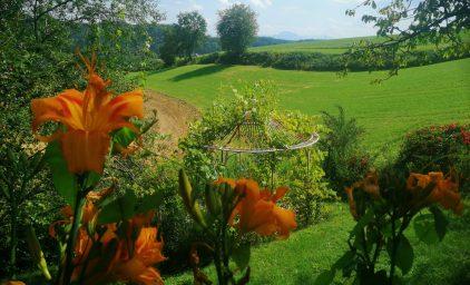 Blühende Paradiese in Oberösterreich!